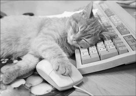 Приколы: Чего то я устал сегодня...)
