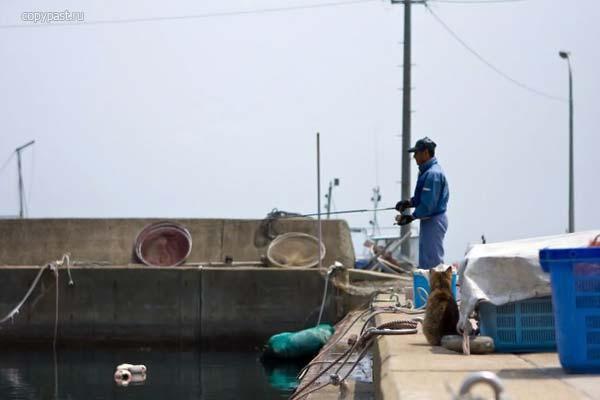 Приколы: Рыбак неудачник=) (4 фото)