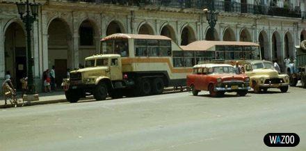 Приколы: Автобусы кубы (11 фото)
