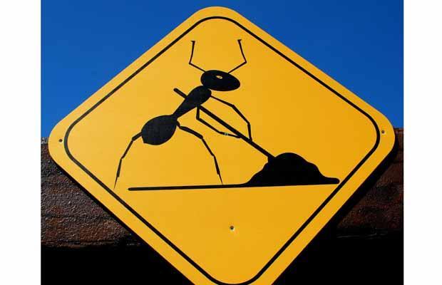 Приколы: Странные дорожные знаки (16 фото)