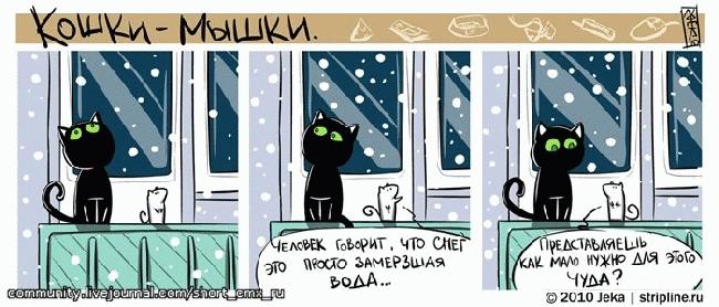 Картинки, Приколы: Комикс Кошки-Мышки