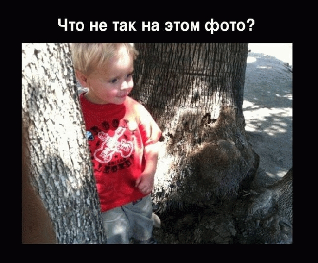 Жесть: Ребенок родился в рубашке