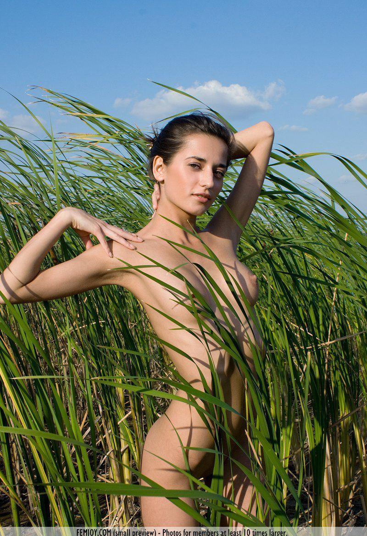 Девушки: Эротическая модель Эллада (15 фото)